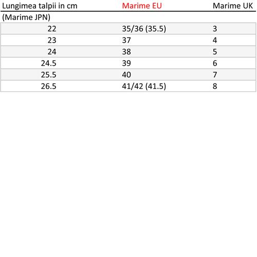 Slapi IPANEMA FLIP Marimea 41.5